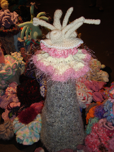 the amazing crochet coral reef exhibit knitting